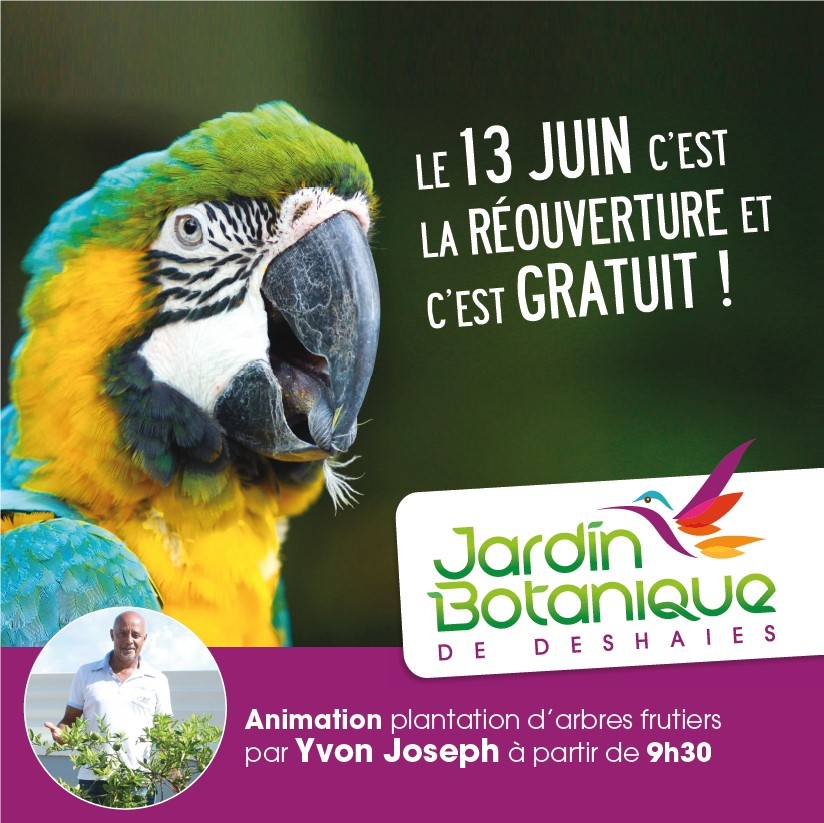Réouverture du jardin Botanique et c'est gratuit le 13 juin