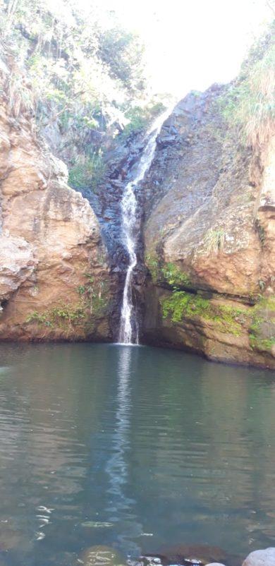 Des roches gravées à la grande rivière de Vieux Habitants