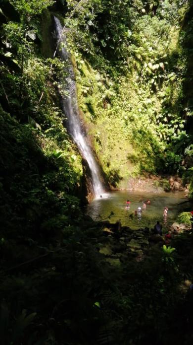 Un écrin vert, la cascade Bois Banane au Lamentin