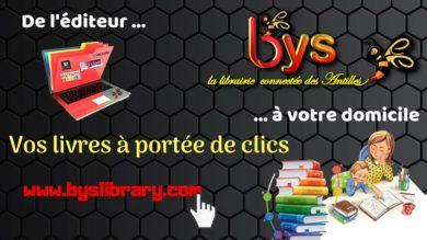 Merci à Byslibrary pour la chasse aux livres de Maxetlisa