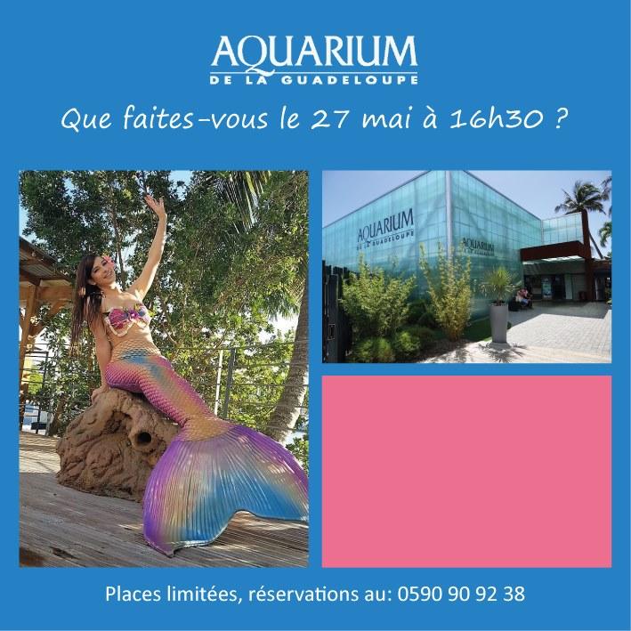 La sirène est de retour à l'aquarium le 27 mai et le 4 Juin