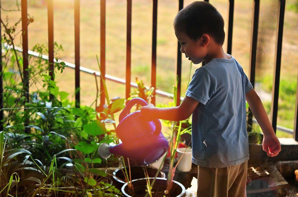 Atelier Jardinage Enfant Caribplantes