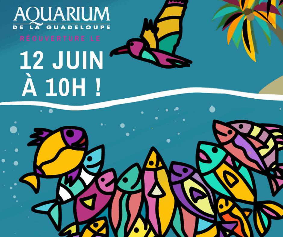 Réouverture de l'Aquarium
