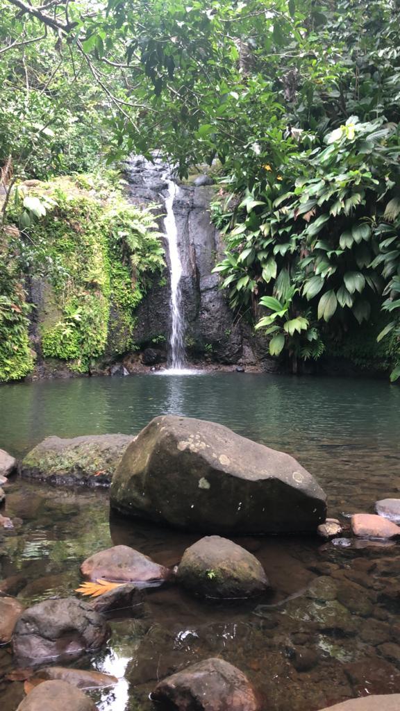 La cascade Bis à Sainte Rose , verdure et fraîcheur au rdv !