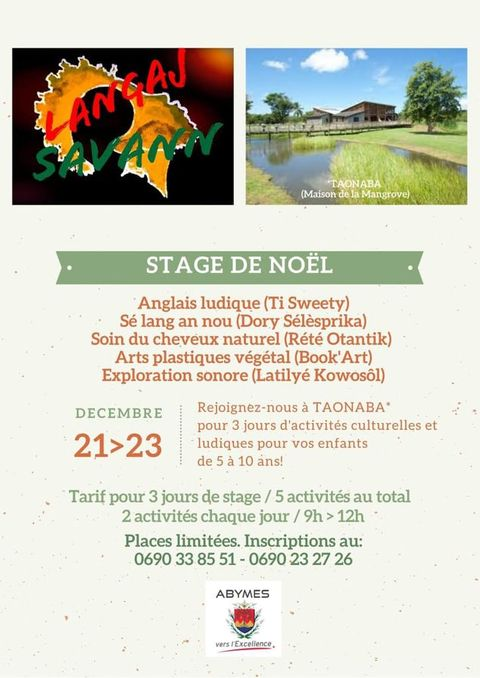 Stage de Noel – 5/10 ans – Abymes