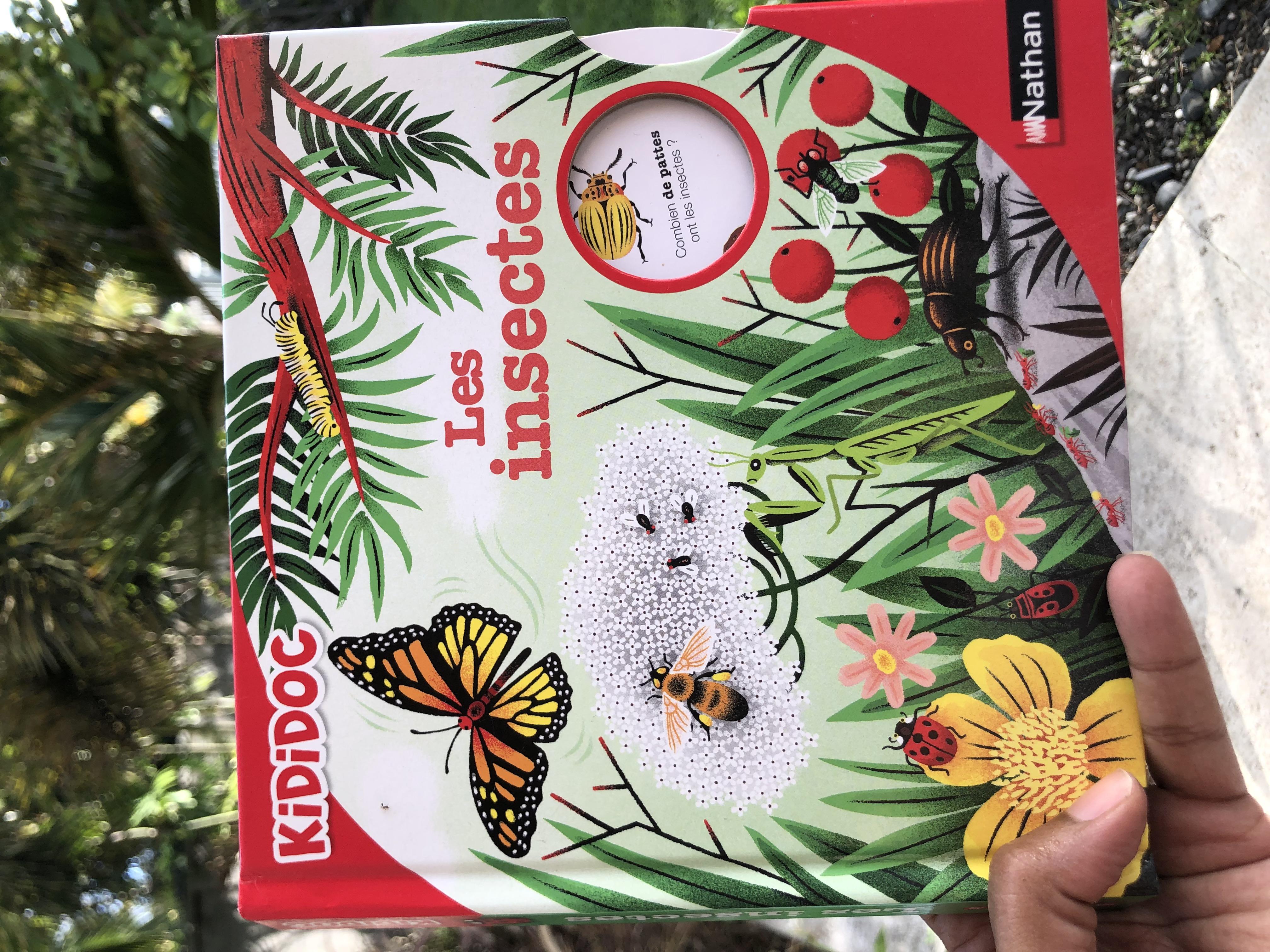 Les insectes –  Un livre animé pour les enfants curieux